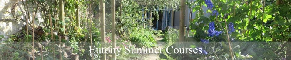 London Eutony Centre Summer Courses